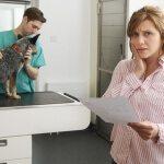 Find The Best Pet Insurance