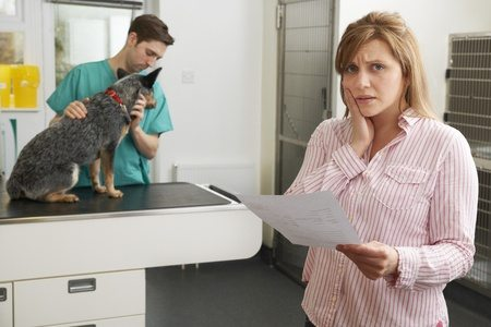 Find The Best Pet Insurance
