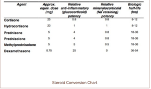 best-steroid-conversion-chart