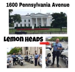 Lemon Head Mike