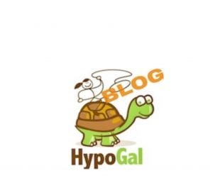 about the hypogal blog