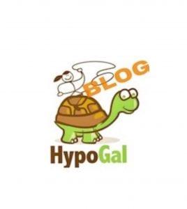 About HypoGal Blog