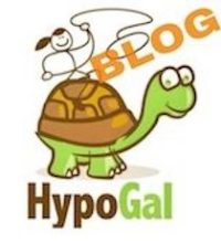 HypoGal Blog, Chronic Illness Health Tips