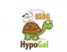 about hypogalblog CHRONIC ILLNES